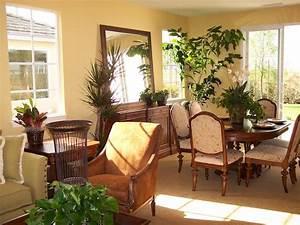 Pflanzen Für Wohnzimmer : 1001 ideen f r zimmerpflanzen f r wenig licht ~ Markanthonyermac.com Haus und Dekorationen