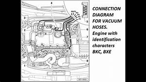 Vw Tdi Alh Vacuum Diagram