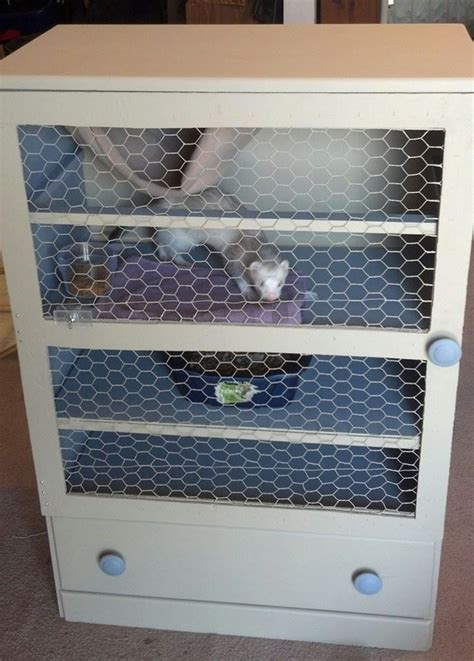 pin  cages