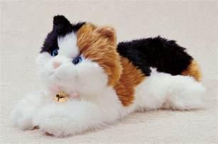 cat stuffed animal cat plush stuffed stuffed animals photo 11219365 fanpop