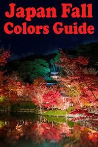Japan Fall Colors & Autumn Foliage Guide - Travel Caffeine  Fall