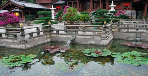 Lotus Garden Hours by Chi Nunnery Hong Kong Opening Hours How To Get