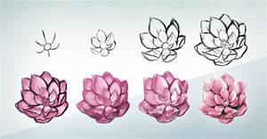 how to draw flowers | Tumblr