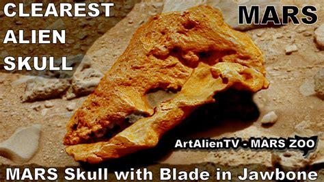 Blade Found In Jaw Bone