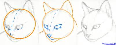 how to a cat step 2 how to draw a cat draw a realistic cat