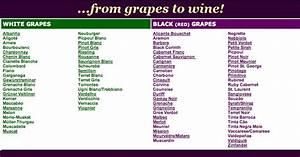 Rosetta Wines Learn About Wine