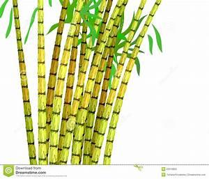 Sugar cane harvest clipart - Clipground
