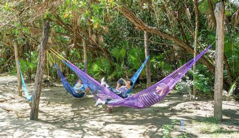 Best Type Of Hammock by How To Hang A Cing Hammock Essentials And Best Practices