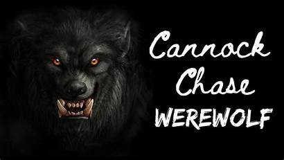 Cannock Chase Werewolf Paranormal