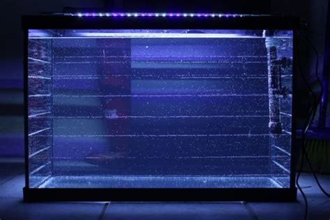 the wound dresser sparknotes 100 aquarium that uses blue light and blue led