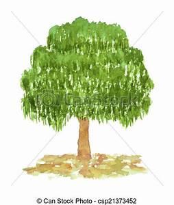 Bilder Bäume Gemalt : gemalt hand aquarell baum birke gezeichnet gemalt stock illustrationen clipart ~ Orissabook.com Haus und Dekorationen