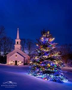 Pin, On, Christmas, Tree, Beauty