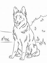 Shepherd German Coloring Pages Outside sketch template