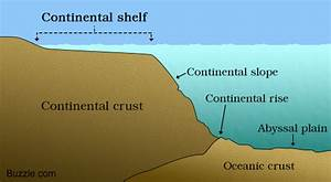 Ocean Floor  Everything You Need To Know  U2013 Knowledge Bunker