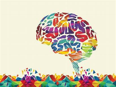 Learning Science Cognitive Brain Education
