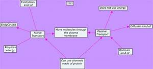 Genesis--Compare Active and Passive Transport