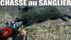 You Tube Chasse : battues aux sangliers 3 jours de chasse avec dindin youtube ~ Medecine-chirurgie-esthetiques.com Avis de Voitures