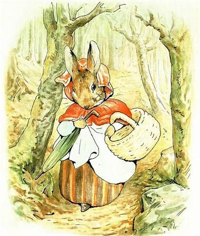 Beatrix Rabbit Potter Peter Illustrations Mrs Childrens