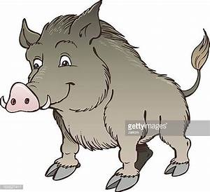 Wild Boar Stock Illustrations And Cartoons | Getty Images