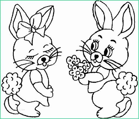 lustige kaninchen bilder kostenlos niedlich hasen