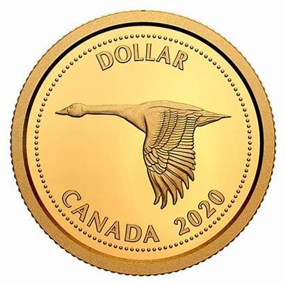 Colville Canadian Dollar Coin Alex Gold 1967
