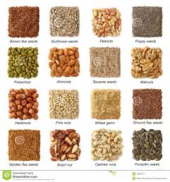 Are Pumpkin Seeds Fatty by Oil Seeds And Nuts Stock Image Image 18299711