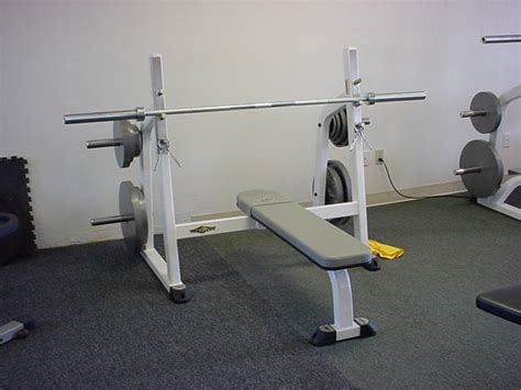 jual barbell types of bench press bars 28 images types of bench