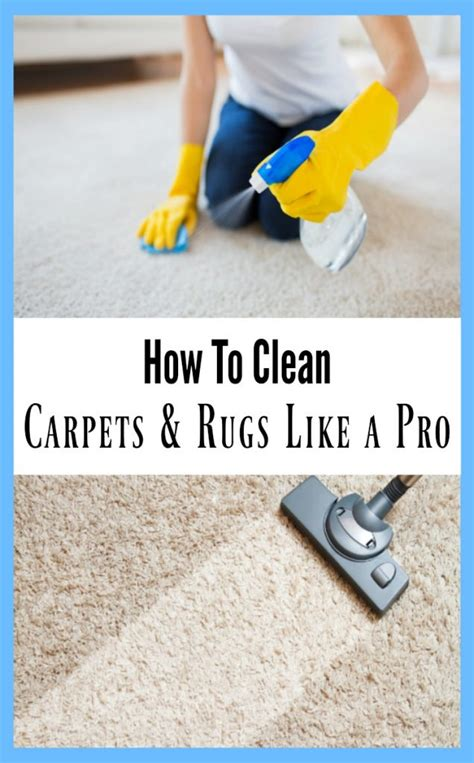 how to clean carpets kolb carpet cleaning carmel in carpet review