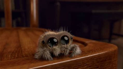 Lucas, The Most Adorable Animated Spider That You Will