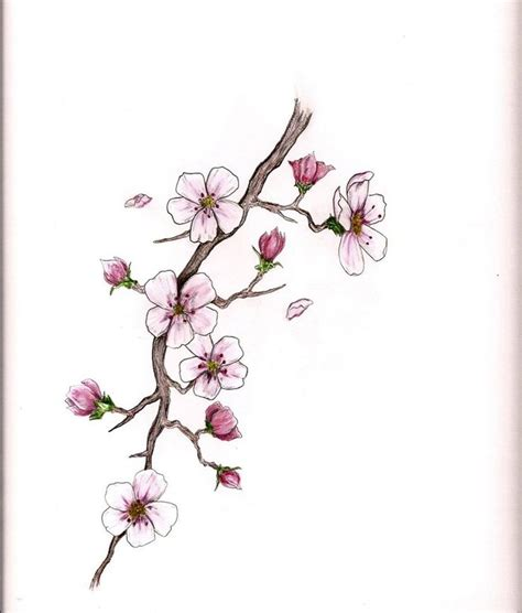 japanese cherry blossom design 233 best images about shoulder on pinterest cherries cherry blossom tree and cherry tattoos