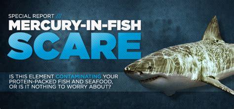 mercury  fish scare  safe    seafood
