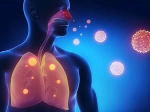Novel Vaccine Strategy against Human Respiratory Syncytial ...