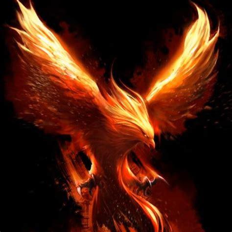 Flaming Phoenix Animations - YouTube
