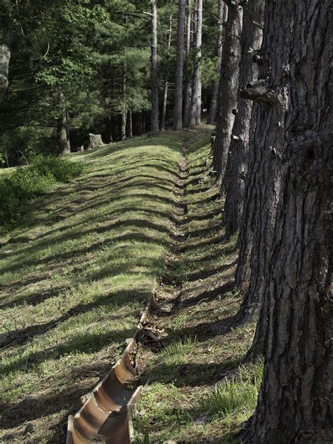 alumna artists nature photography  open nov