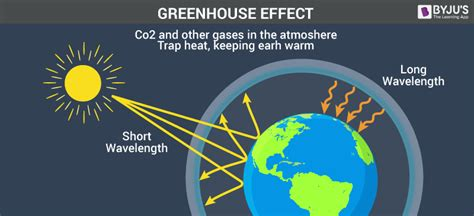 Green House Gasses by Greenhouse Effect And Global Warming Importance And