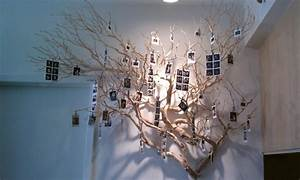 How to use tree branch diys for indoor decor