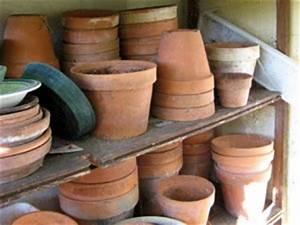 Pot De Fleur En Terre Cuite : pots en terre cuite conseils d 39 entretien ~ Premium-room.com Idées de Décoration