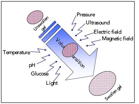 Stimuli-sensitive hydrogels.   Download Scientific Diagram
