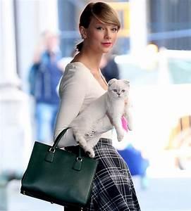 Celebrity Pets: Taylor Swift's Cats – Mooch Mooch Pets