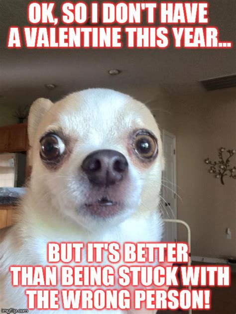 Alone On Valentines Day Meme - alone on valentine s day imgflip