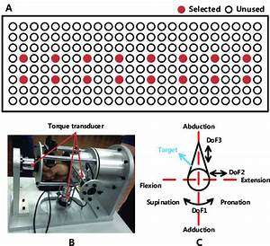 Experiment Setups   A  Electrodes Selection  The Red Dots