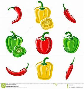 Chili And Pepper Set  Vector Stock Vector