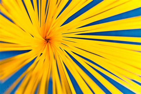 Catchy Colors The Blue And Yellow Selection  Flickr Blog