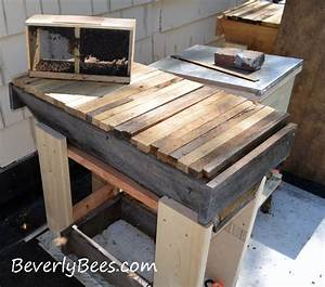 How To Install Package Bees In A Top Bar Hive