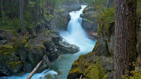 mount rainier national park usa silver falls ohanpecosh