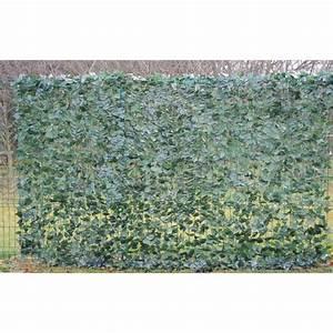 Arbuste Brise Vue : brise vue lierre filet 2 m x 3 m pour ext rieur ~ Preciouscoupons.com Idées de Décoration