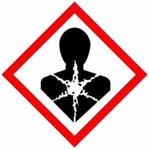 Fileghs pictogram silhouettesvg wikimedia commons for Ghs health hazard pictogram
