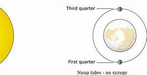 32 Spring Tide Diagram