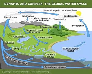 New Diagrams Explain How Humans Affect Water Cycle