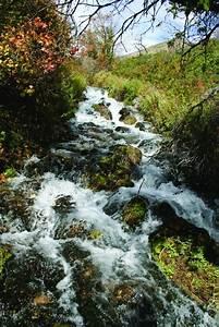Geosights  Cascade Springs  Wasatch County  U2013 Utah